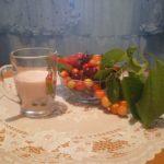 Йогурты из козьего молока, классика и с наполнителями
